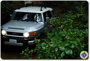 silver toyota fj cruiser 4x4 trail bushes