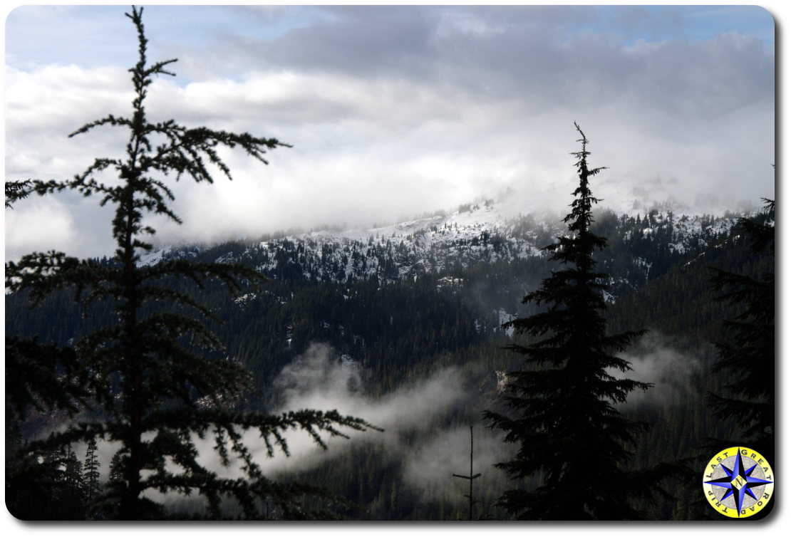 snow covered hills tree view