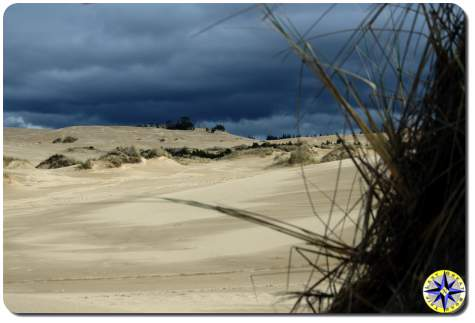 florence sand dunes