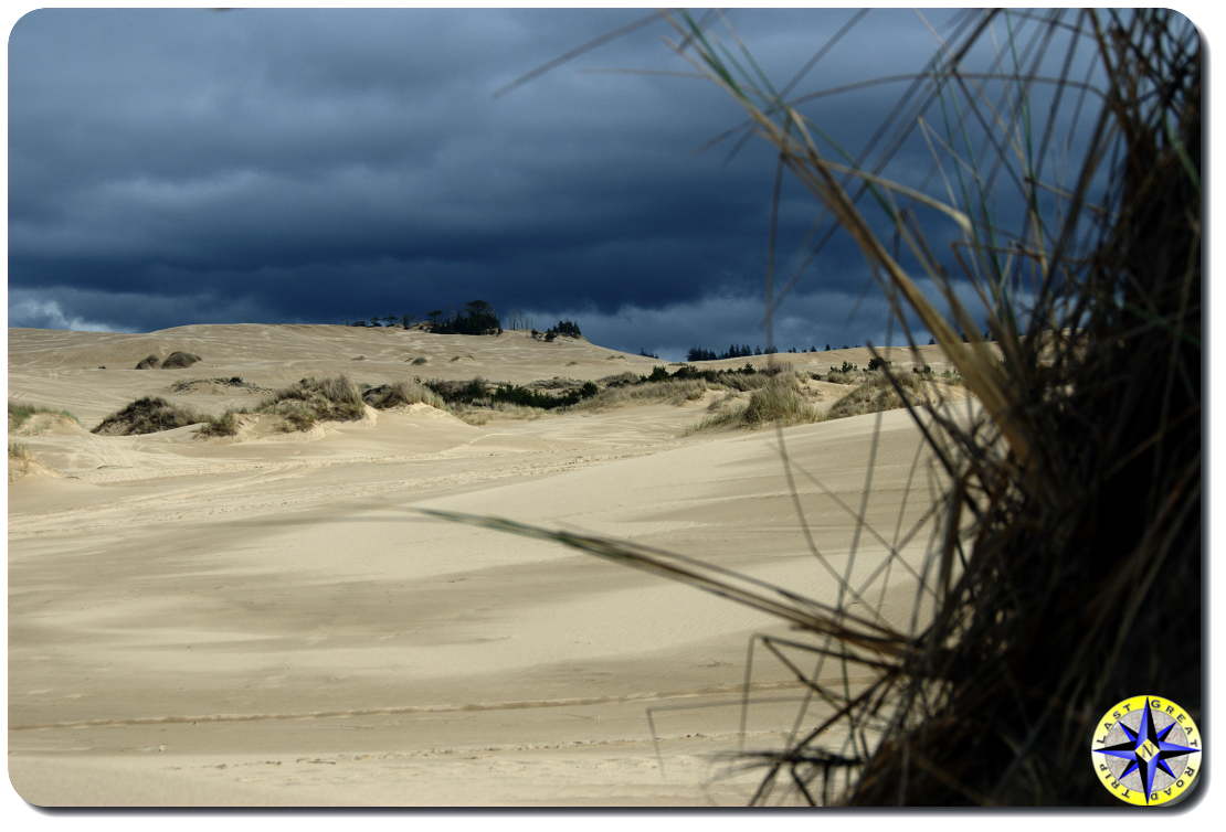 florence sand dunes