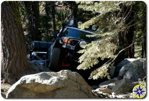 fj cruisers In rubicon trail trees