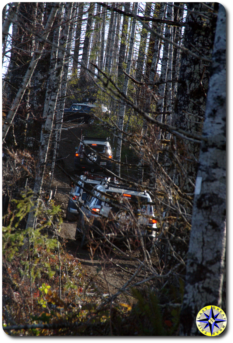 4 fj cruisers tillimook forest in woods