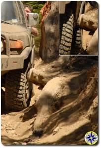 fj cruiser stump on naches wagon trail