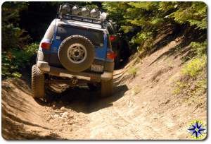 voodoo blue fj cruisers flexing down 4x4 trail