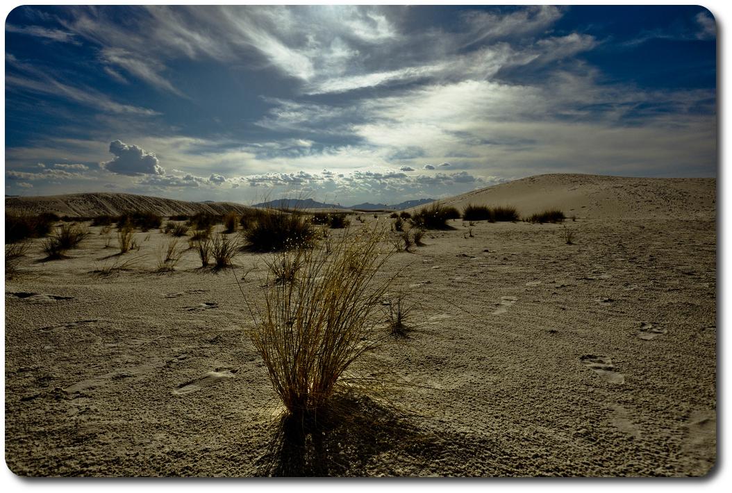 white sand desert blue sky