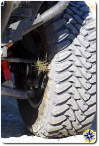cactus stuck in toyo open country tire