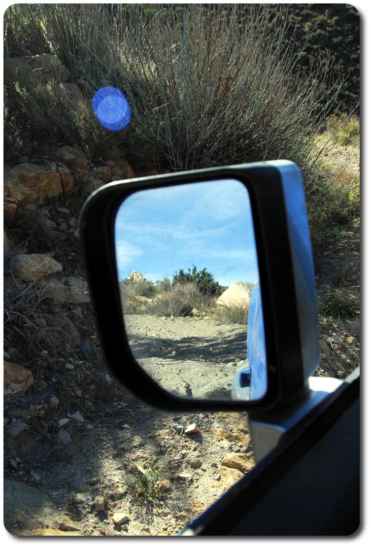 fj cruiser mirror view