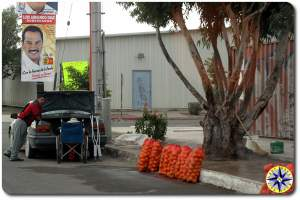 road side oranges for sale baja mexico