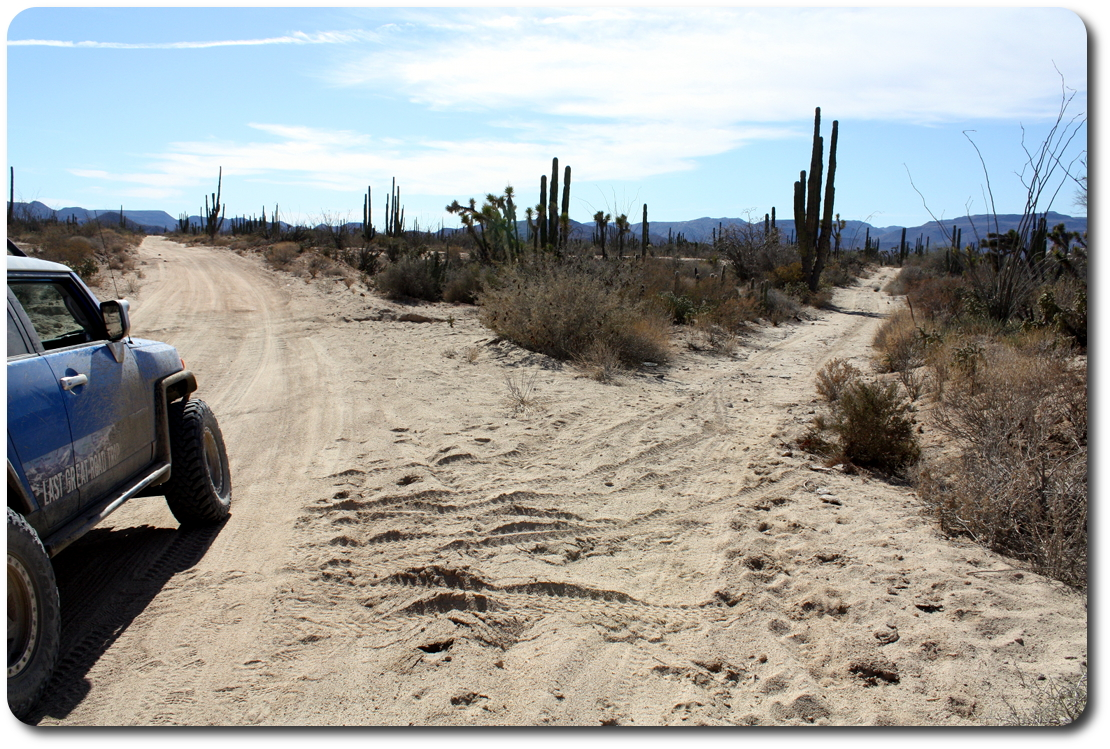 baja trail choices