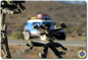 baja cactus fj cruiser