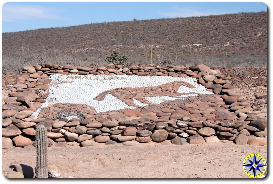 baja mexico millitary base rock horse art