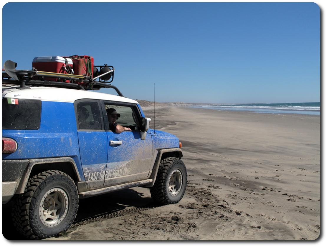 blue bunny baja beach