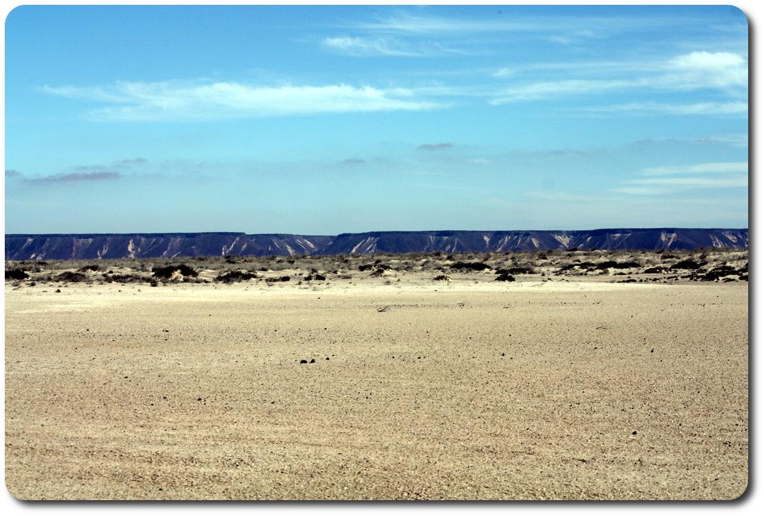 dry baja marsh
