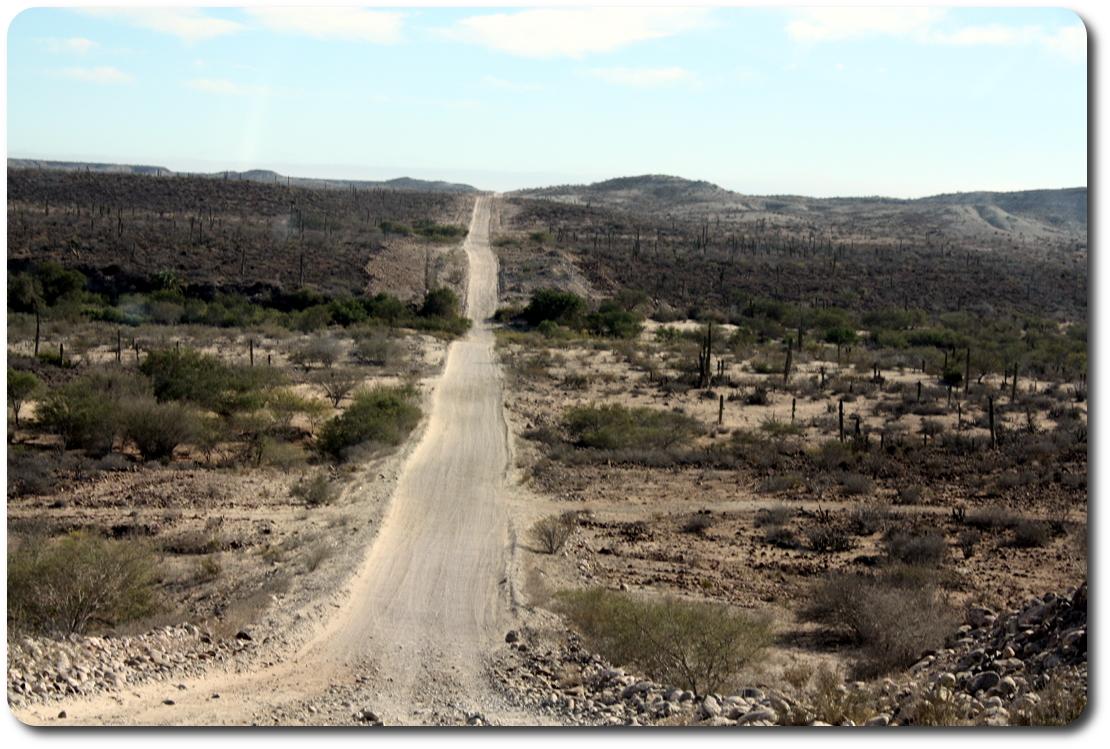 long straight baja road