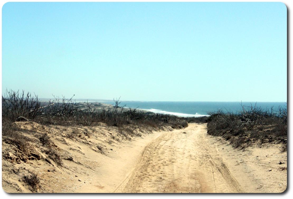 pacific ocean from bajb dunes