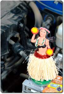 Hula Betty