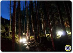 truck lights in woods