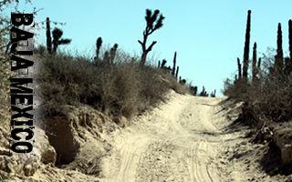 baja mexico off road adventure
