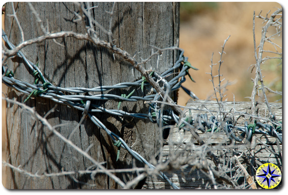 barbed wire wrapped fence post