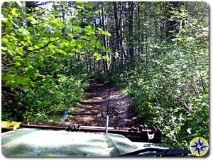 overgrown 4x4 trail