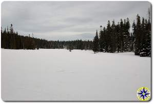 snow covered meadow