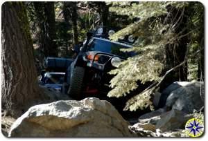 fj cruisers In rubicon trail trees