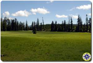 naches wagon trail government meadow