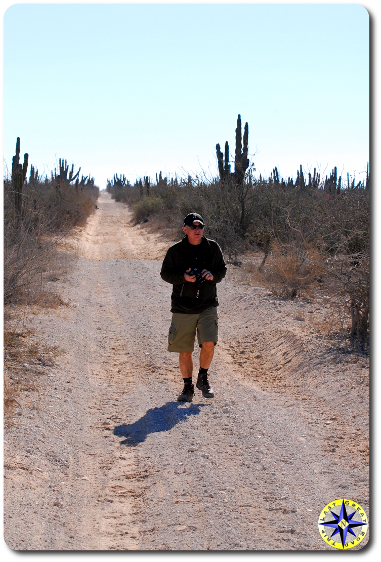 Man walking baja dirt road