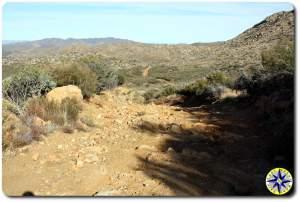 baja 1000 trail ahead