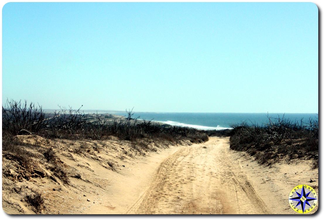 pacific ocean view from dunes