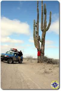 two men fj cruiser tall cactus baja mexico