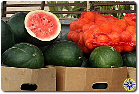watermelons oranges for sale