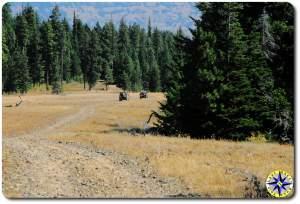 D90 FJ40 driving two-track 4x4 trail