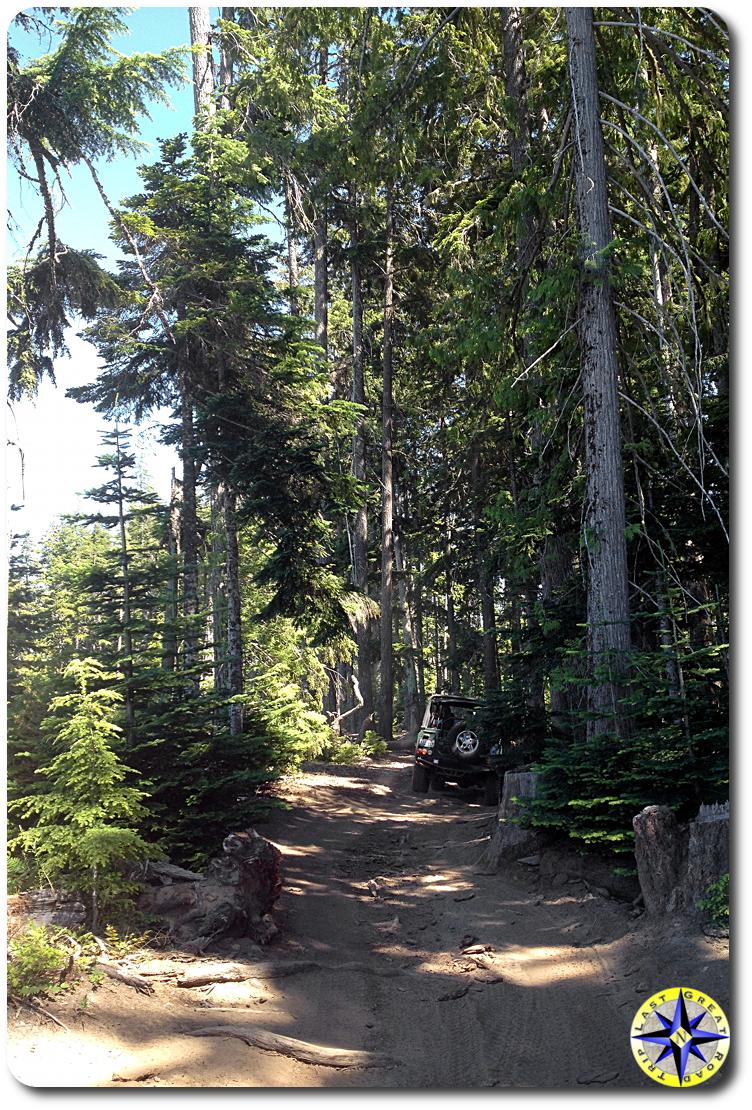 defender 90 naches wagon trail trees