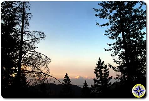 blue sky sunrise through the trees